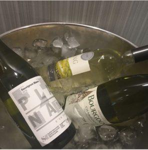 Vinos Outlook Wine
