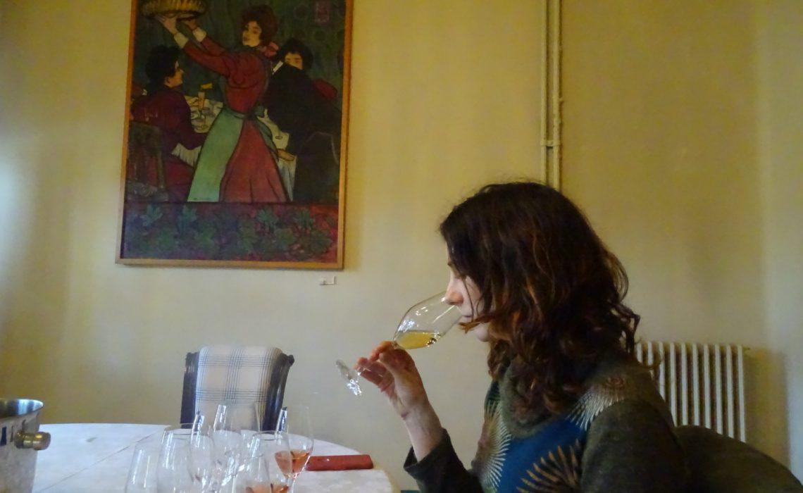 Cómo catar vinos como un profesional
