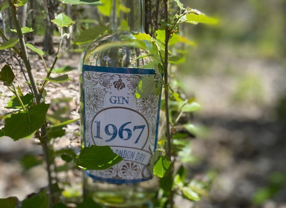 "SUPERMERCADO DIEZ celebra su aniversario con nuevo Gin Chileno ""1967"""
