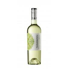 Caja de 6 unidades Veramonte Reserva Sauvignon Blanc ($3.990 c/u)
