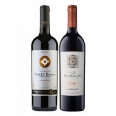 Pack 6 botellas Santa Digna Gran Reserva Carmenere + 6 Chocalan Gran Reserva Origen Carmenere ($3.990 c/u)