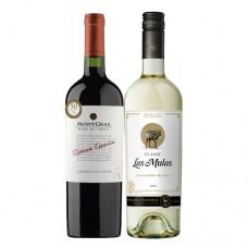 Pack 6 botellas MontGras Reserva Especial Cabernet Sauvignon + 6 Las Mulas Classic Sauvignon Blanc ($2.990 c/u)
