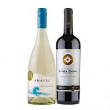 Pack 6 botellas Amaral Sauvignon Blanc + 6 Santa Digna Gran Reserva Cabernet Sauvignon ($3.990 c/u)