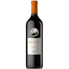 Malleolus, España