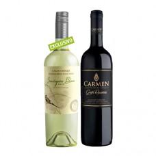 Pack 6 botellas Casas del Bosque Winemakers Selection Sauvignon Blanc + 6 Carmen Gran Reserva Grande Vidure Cabernet Sauvignon ($3.990 c/u)