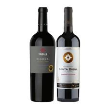 Caja 6 botellas Tabali Reserva Edición Limitada Cabernet Sauvignon + 6 Santa Digna Gran Reserva Cabernet Sauvignon ($3.990 c/u)