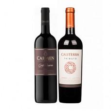 Pack 6 botellas Carmen Gran Reserva Cabernet Sauvignon + 6 botellas de Caliterra Tributo Cabernet Sauvignon ($3.990 c/u)