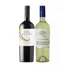 Pack 6 botellas Montgras 4 + 6 botellas Casas Del Bosque Sauvignon Blanc ($4.990 c/u)