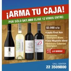 Caja de 12 botellas a Elección a sólo $3.990 c/u