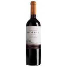 Caja de 6 unidades Castillo Molina Cabernet Sauvignon ($4.990 c/u)
